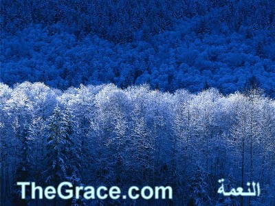 TheGrace Arabic Christian Website